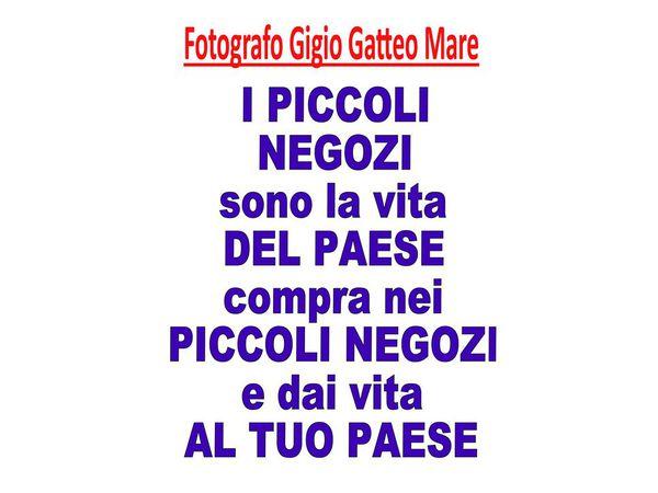 Foto Gigio - Compra nei negozi del paese