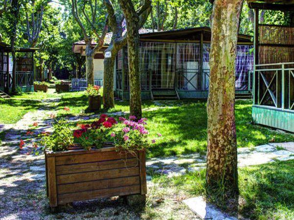 Villaggio Camping Delle Rose - Vista
