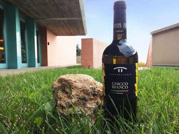 CampoDelSole - Vino